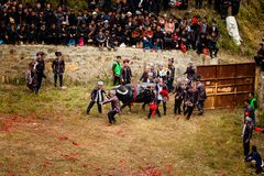 Festival de combate do búfalo de água na província de Guizhou China da vila de Heko foto de stock royalty free