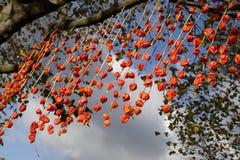 Festival de Diwali des lumières Images libres de droits
