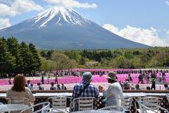 Festival de Fuji Shibazakura, Kawagujiko Japón Fotografía de archivo