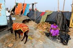 Festival de Gangasagar Fotografia de Stock Royalty Free