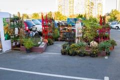 Festival de jardin Image libre de droits