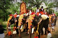 Festival de kerala Fotografia de Stock Royalty Free