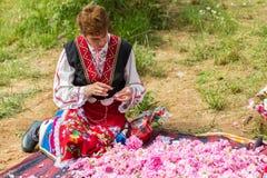 Festival de la cosecha de Rose Foto de archivo