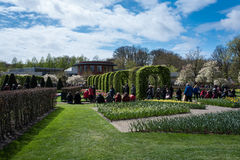 Festival de la flor en Keukenhof en la primavera en marzo de 2017 Fotografía de archivo