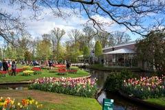 Festival de la flor en Keukenhof en la primavera en marzo de 2017 Imagen de archivo