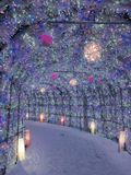 Festival de lanterne blanc de Sapporo au Hokkaido, Japon photo stock