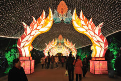 Festival de lanterne chinois de l'an 2012 neuf Photos stock