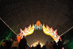 Festival de lanterne chinois de l'an 2012 neuf Photo libre de droits