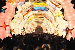 Festival de lanterne de 2013 Chinois à Chengdu Photographie stock libre de droits