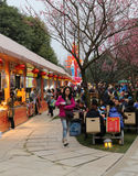 Festival de linterna, Chengdu, China en 2015 Fotos de archivo