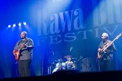 Festival 2014 de los azules de Rawa: Shawn Holt y las lágrimas Fotografía de archivo