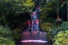 Festival de luzes, parque de Pukekura, Plymouth novo, Nova Zelândia imagem de stock royalty free