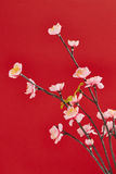 Festival de mola chinês da decoração de ano novo Foto de Stock Royalty Free