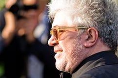 Festival de película de Cannes 2011, Francia Fotografía de archivo libre de regalías