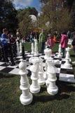 Festival de Polytech en parc de Gorki, Moscou Échecs énormes Photo libre de droits