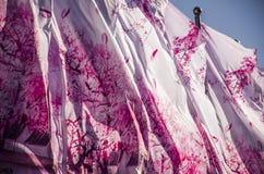 Festival de primavera Imagenes de archivo