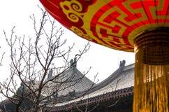 Festival de primavera con la linterna roja Foto de archivo libre de regalías