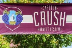 Festival de récolte d'écrasement de vin en Carlton Oregon images stock