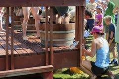 Festival de récolte d'écrasement de vin en Carlton Oregon images libres de droits