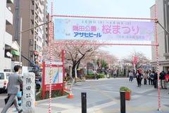 Festival de Sakura au parc de Sumida près de la rivière de Sumida photographie stock libre de droits