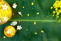 Festival de Songkran o Año Nuevo tailandés fotos de archivo