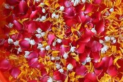 Festival de Tailandia Songkarn colorido con el jazmín y el marigo color de rosa Fotografía de archivo