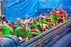 Festival de Tomatina do La onde os povos estão lutando tomates imagem de stock royalty free