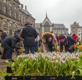 Festival de Tulip Bulb sur le barrage à Amsterdam Image libre de droits