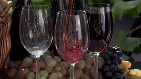 Festival de vino almacen de metraje de vídeo