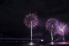 Festival 2016 dei fuochi d'artificio di Busan - pirotecnica di notte Immagini Stock Libere da Diritti