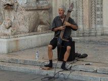 Festival dei musicisti ambulanti Fotografie Stock Libere da Diritti