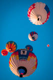 Festival del aerostato Imagen de archivo