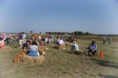 Festival del arándano imagen de archivo libre de regalías