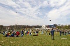 Festival del cervo volante Fotografie Stock