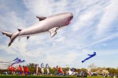 Festival del cervo volante Immagine Stock