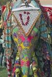 Festival del elefante Fotos de archivo libres de regalías