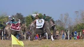 Festival del elefante, Chitwan 2013, Nepal Foto de archivo