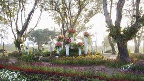 Festival del fiore Immagini Stock
