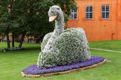 Festival del fiore di Odense Immagini Stock