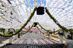 Festival del fiore (festas fanno il povo, il campo Maior 2015, Portogallo) Immagini Stock Libere da Diritti