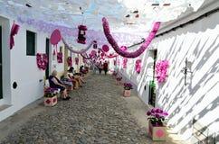 Festival del fiore (festas fanno il povo, il campo Maior 2015, Portogallo) Fotografie Stock Libere da Diritti