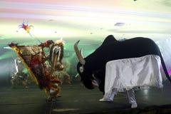 Festival del folklore de Parintins en el Brasil Fotos de archivo libres de regalías