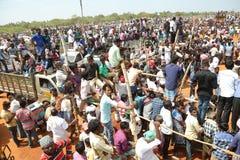 Festival del virattu de Manju Fotos de archivo libres de regalías