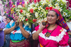 Festival della palma & del fiore in Panchimalco, El Salvador Immagine Stock Libera da Diritti