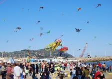 Festival der Drachen lizenzfreie stockbilder