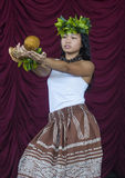 Festival des îles du Pacifique de Ho'olaule'a Image stock
