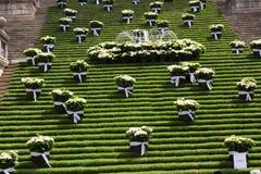 Festival des décorations florales à Gérone images libres de droits