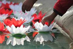 Festival Of Dewali offering lotus flowers on water. London Festival Of Dewali performers and scenes at Trafalgar Square, hands put lotus flower offering onto Stock Photo