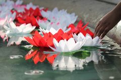 Festival Of Dewali offering lotus flowers wishes. To God Ganesh Royalty Free Stock Photos