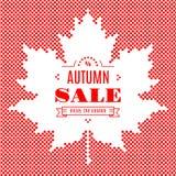 Festival di caduta della foglia di acero del fondo dell'insegna di vendita di autunno Fotografia Stock